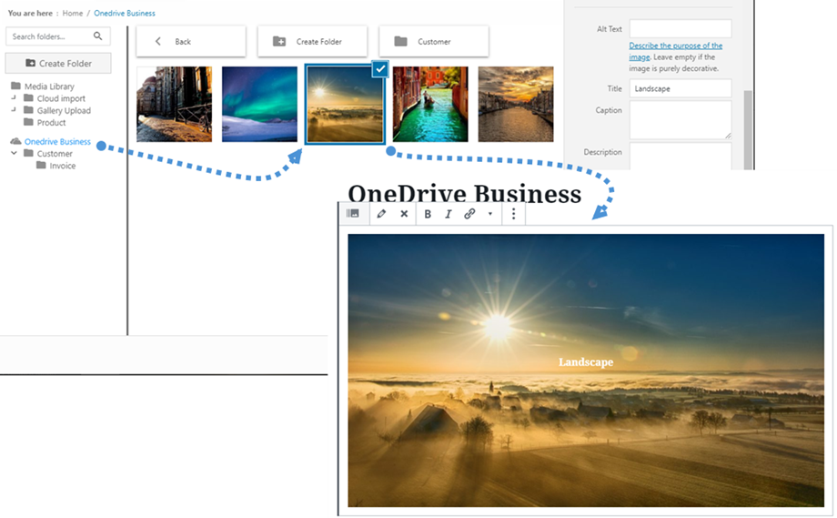 embed-OneDrive-business-image