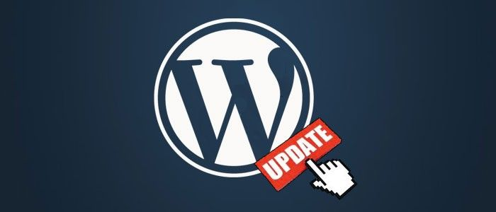WordPress automatic plugin updater