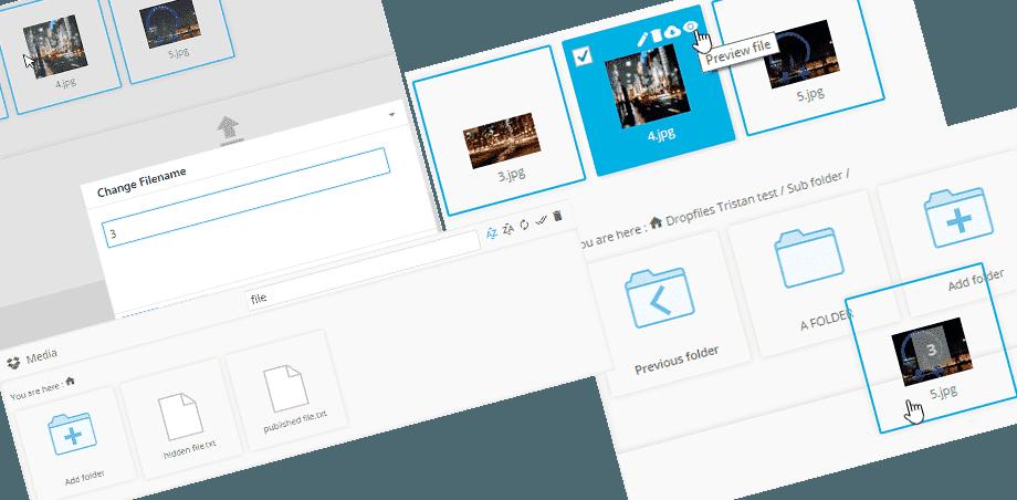 dropbox-file-management